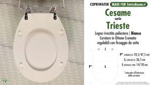 SCHEDA TECNICA MISURE copriwater CESAME TRIESTE