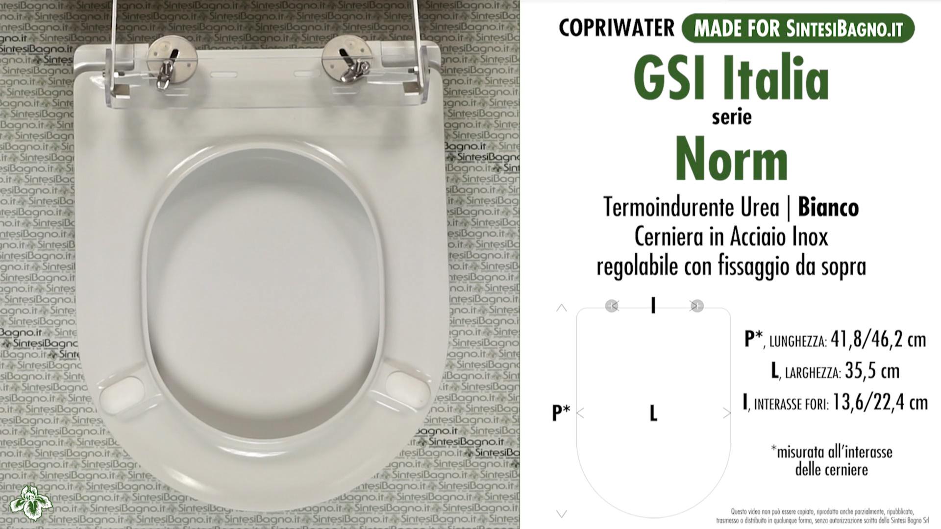 SCHEDA TECNICA MISURE copriwater FACIS/GSI NORM